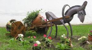 конячка-радість