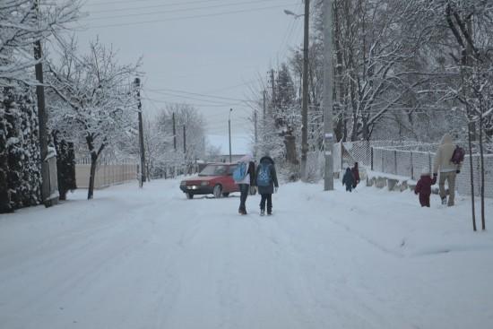 небезпека на дорозі (2)