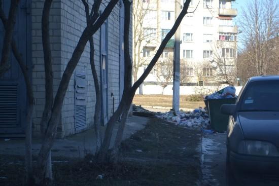шкільна_44_сміття (3)