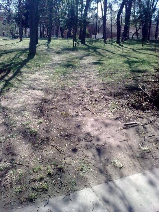 дороги у парку