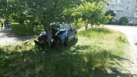 аварія з деревом (5)