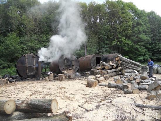 випалювання вугілля на Здолбунівщині (13)