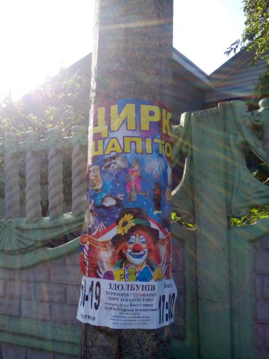 цирк спам